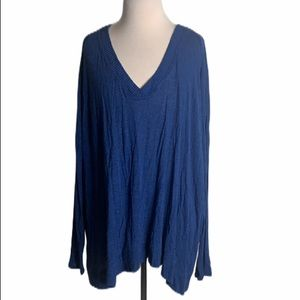 NWOT Zara Collection Blue VNeck Sweater